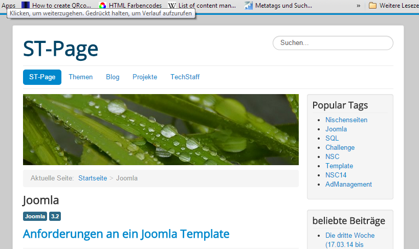 Joomla Archive - ST-Page