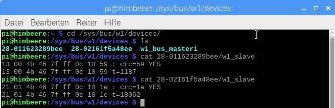 Erste Temperaturdaten des DS18B20 am Raspberry Pi